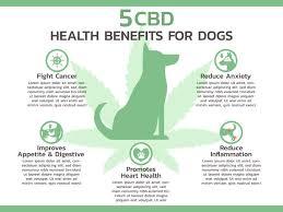 Essential CBD Extract for Pets - ผลข้างเคียง - ราคา - พัน ทิป