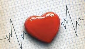 Carditonus - สำหรับความดันโลหิตสูง - วิธี ใช้ - Thailand - ราคา เท่า ไหร่